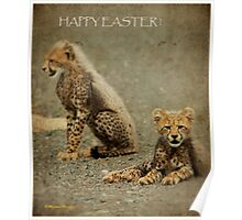 A HAPPY EASTER from the cheetah cups! Poster