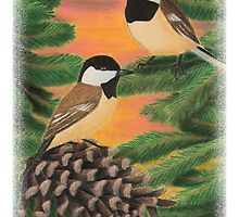 Black Caped Chickadees in Pine Tree by jkartlife