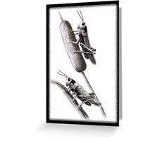 Grasshoppers on cattail Greeting Card