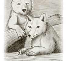 Arctic Fox by jkartlife