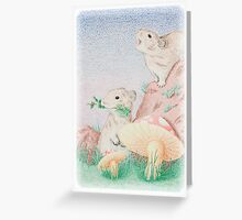 Pika of North America Greeting Card