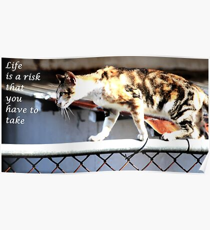 Life is a risk you have to take with qoute Poster