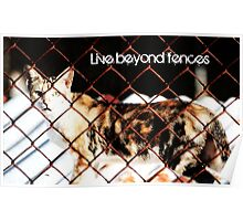 Live Beyond Fences with quote Poster