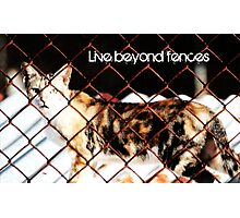 Live Beyond Fences with quote Photographic Print