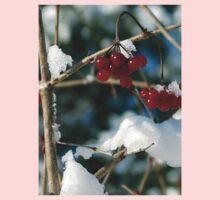 Winter Berries Kids Clothes