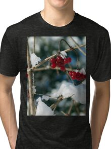 Winter Berries Tri-blend T-Shirt