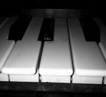 Piano Keys by Maddy Nicole