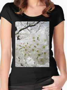 Cherry Blossoms 12 Women's Fitted Scoop T-Shirt