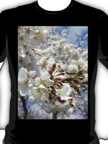 Cherry Blossoms 11 T-Shirt
