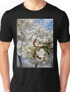Cherry Blossoms 11 Unisex T-Shirt