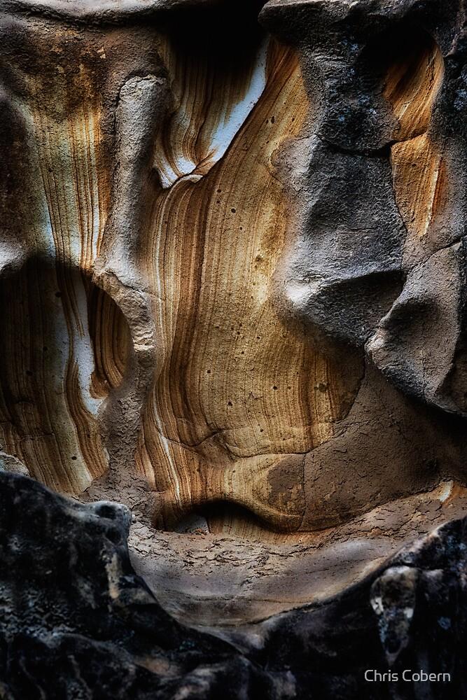 Rock Patterns, Coningham #2 by Chris Cobern