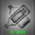 X-Ray bottles by Glenn Launerts