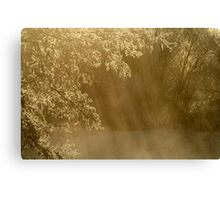 17.3.2013: Frosty Branches Canvas Print