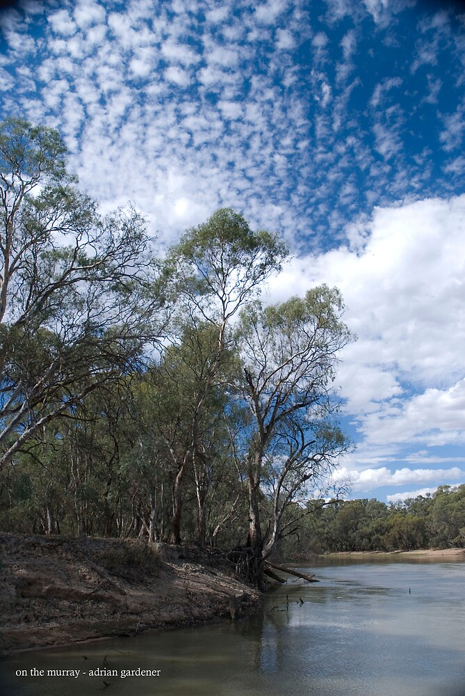 On The Murray by garts