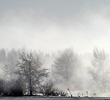 17.3.2013: Winter Morning II by Petri Volanen