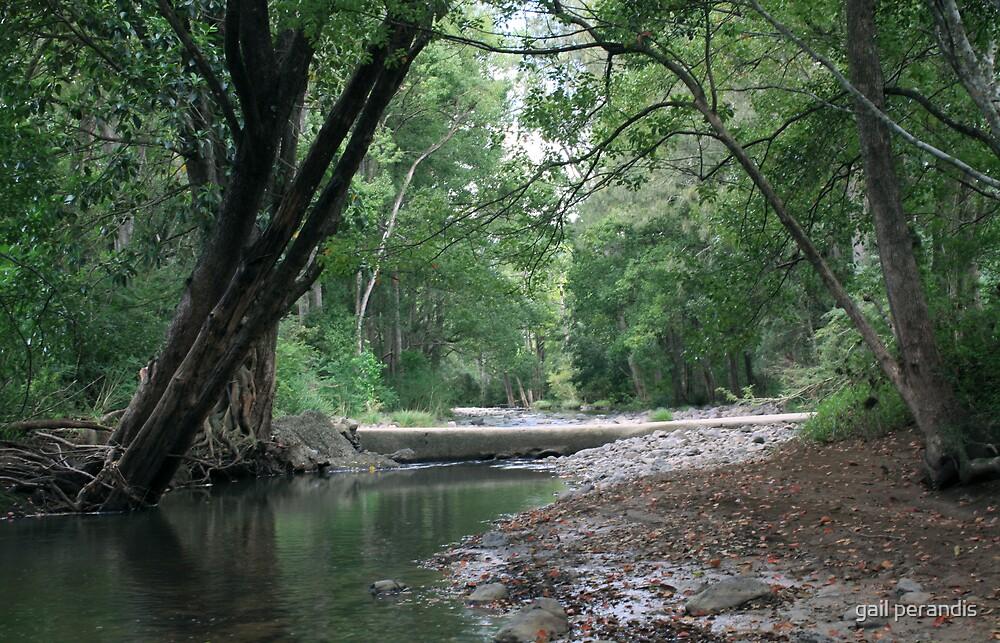 Tyalgum Creek Crossing ... by gail woodbury
