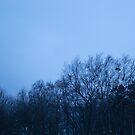 Blue Sleeping Trees by paperbeaver
