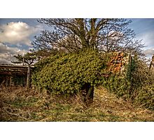 Outbuilding Photographic Print