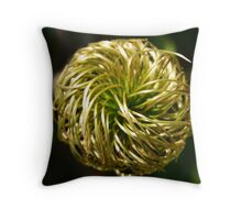 Clematis Seed Head Throw Pillow