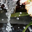 water fountain droplets by Perggals© - Stacey Turner