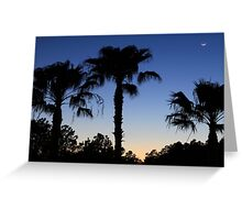 Florida Palms with Crescent Moon Greeting Card