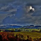 Natures Tones mid Wales by melek0197