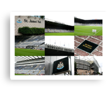 The Magpies Nest ~ Newcastle United Canvas Print
