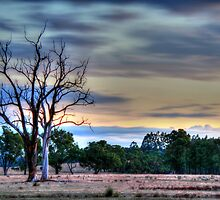 just before dark by mrobertson7