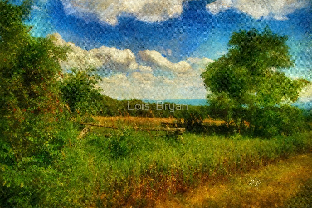 Split Rail Fence by Lois  Bryan
