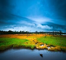 Storm over the marsh by kbrimson