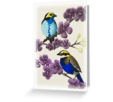 Paradise Tanager and Banded Pitta on Purple Flowers Greeting Card