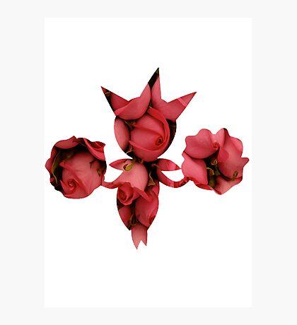 Roselia used Sweet Scent Photographic Print