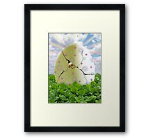 Easter Hatchling Framed Print