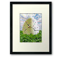 Easter Hatchling Framed Print