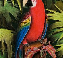 Scarlet Macaw on Stump by jkartlife