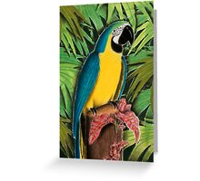Gold and Blue Macaw Greeting Card