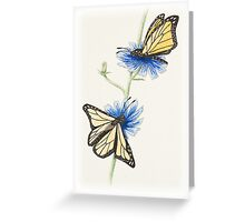 Butterflies with flowers Greeting Card