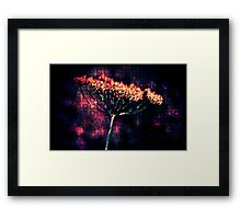 Spring Now, Please. Framed Print