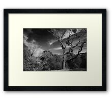 Here As I Stand Framed Print
