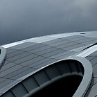 The curves of the Sage by Lorna Taylor