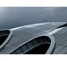 The curves of the Sage Photographic Print