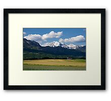 Spring in the Alps Framed Print