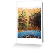 Frog Pond, Walden Pond, November 2011 Greeting Card