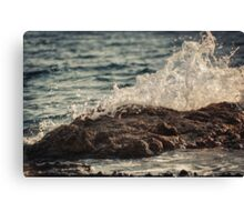 Waves in Time IV Canvas Print