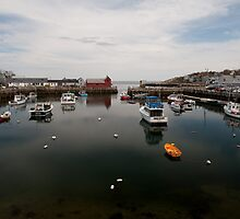 Rockport Harbor by Mike O'Brien