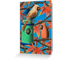 Cardinals in Fall Greeting Card