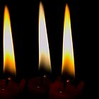 3 flames, 1candle by David  Anderson