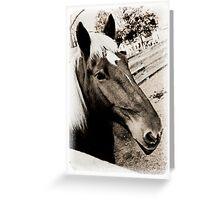 Horse on Farm Greeting Card