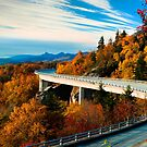 Linn Cove Viaduct  by Miles Moody