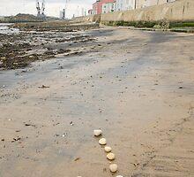 Beach Spiral by Sarah Horsman